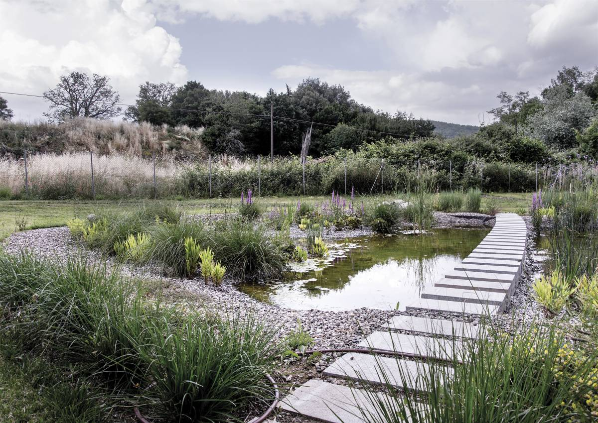 biologo balneabile depurazione naturale sasso pisano paesaggio contemporaneo